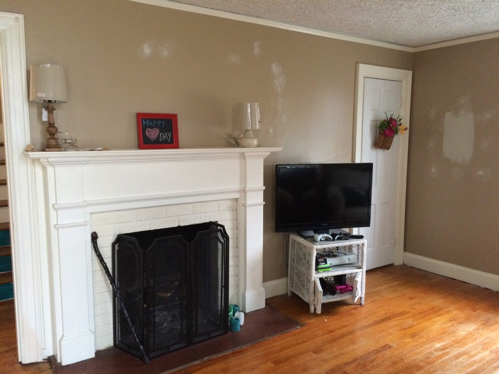 Before Picture - Coral and Teal Living Room Interior Design
